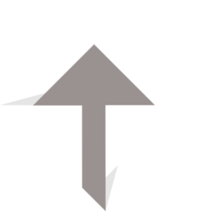 Logo Exalt Agencia Tons de Cinza